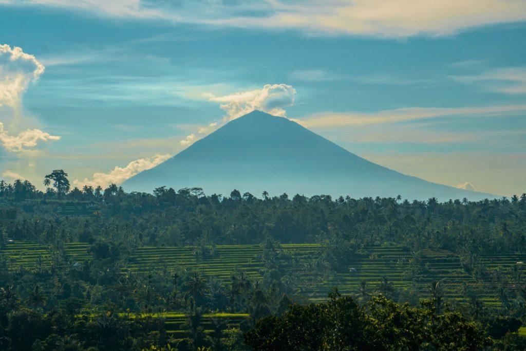 Bali - jungle and volcano view